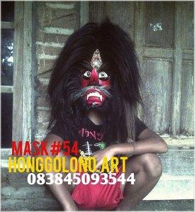 a mask 54